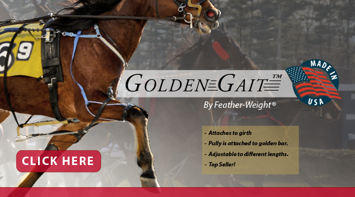 Shop GoldenGait by Feather-Weight at Jacks Inc.