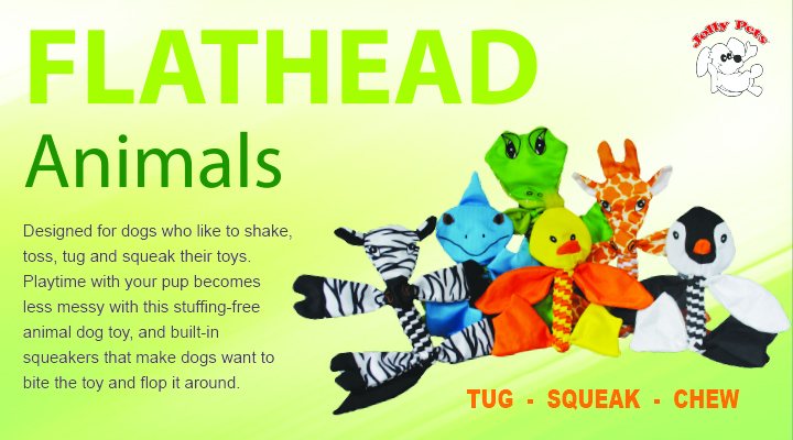 Animal Flatheads from Jolly Pets - New at Jacks Inc.
